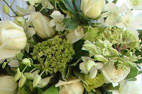 Bromelia Florería