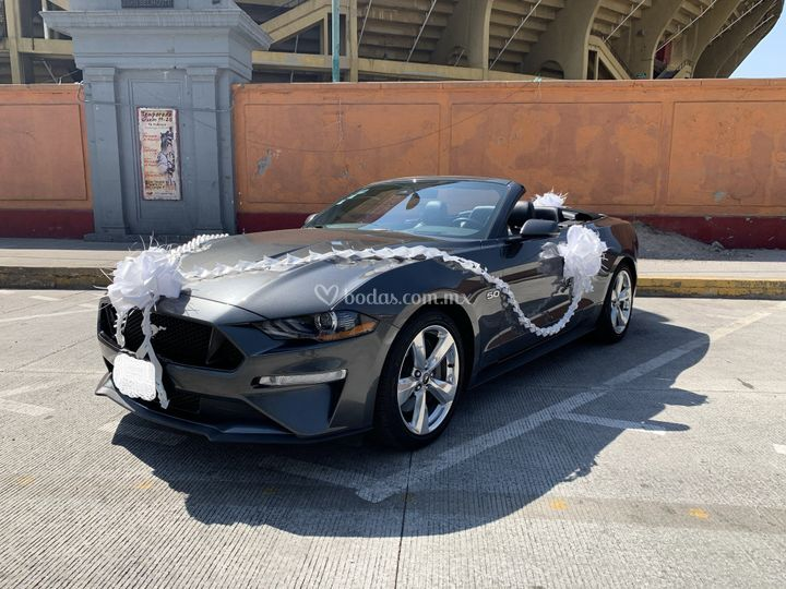 Mustang GT Convertible 2019