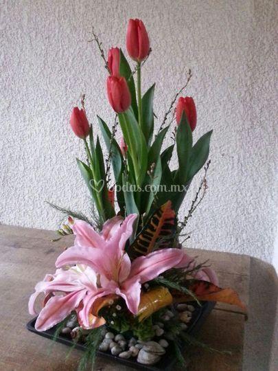 Florería Chalco