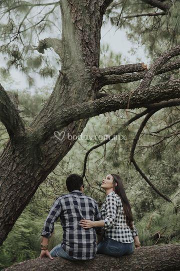 Las raíces del amor