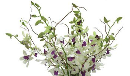 Florarte 1