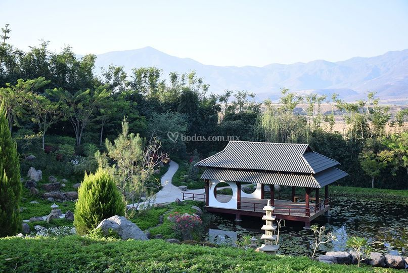 Jardines de m xico for Los jardines de arbesu