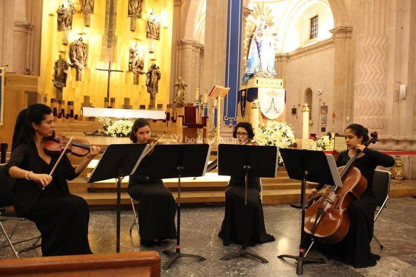 Concierto en Catedral