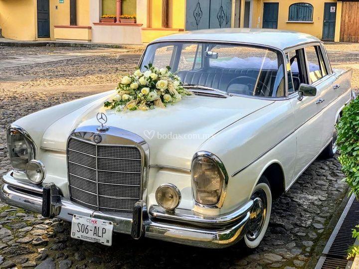 Mercedes Benz Uruapan