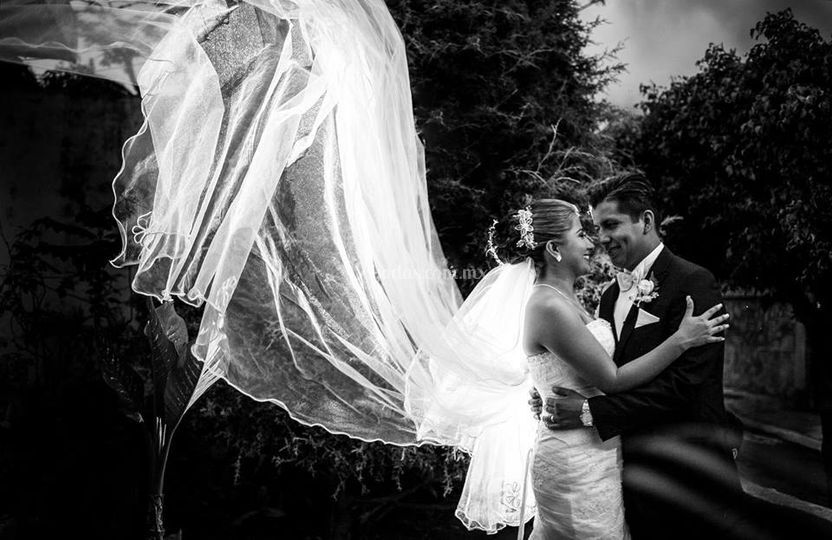 Caravaggio Wedding & Event Planner