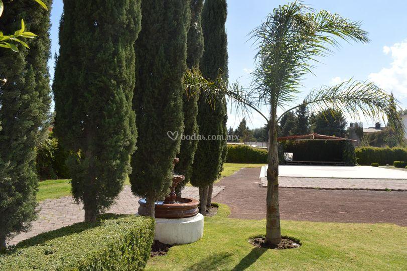 Jardín y fuente