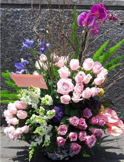 Rosas, orquideas, delfinios