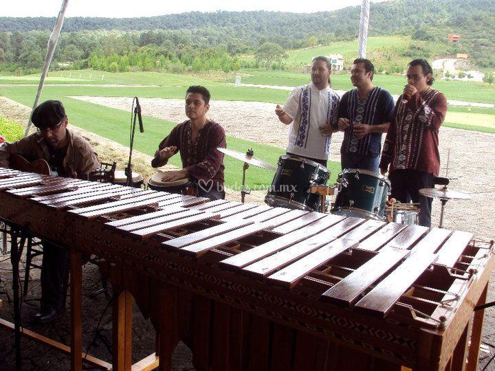 Ensamble PAX Marimba & Percusión