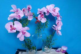Art N'Flores