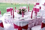 Decoraci�n de las sillas de Banquetes  Tejalpa