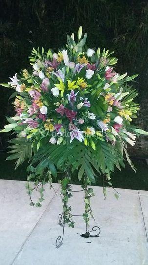 Monumental de lilis