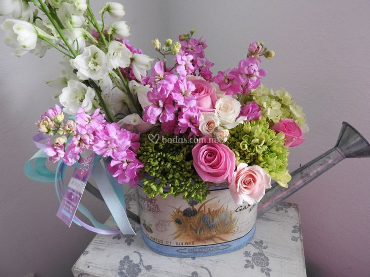 Regadera grande de Magenta Florería Chic