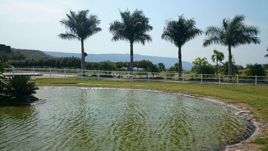 Lago artificial 4