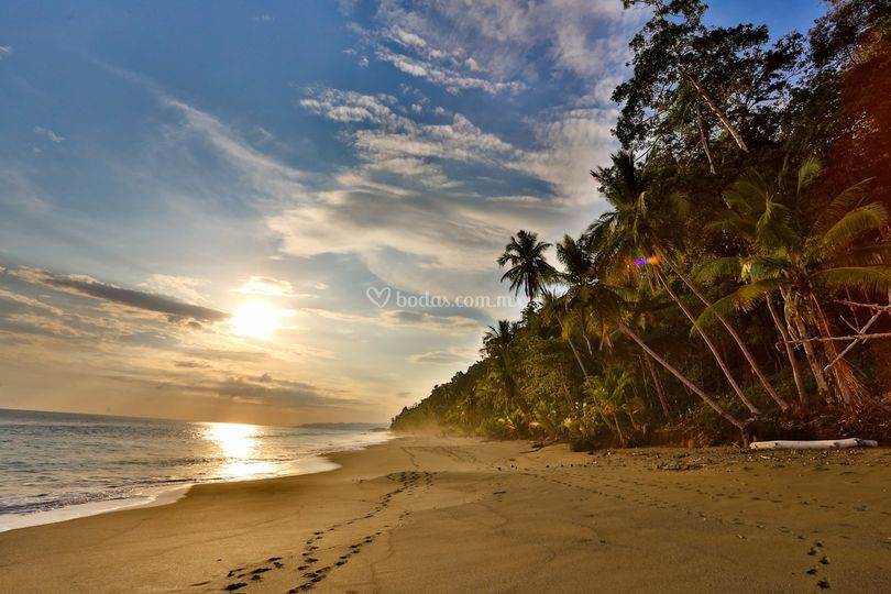 Pura Vida !! Costa Rica