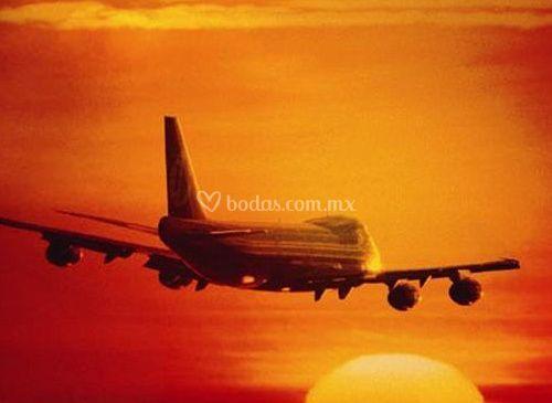 Vista del avión