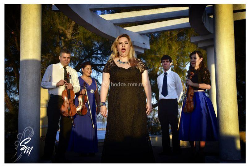 Stradivarius Mazatlán