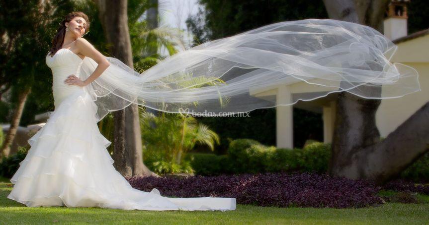 Fotos de la novia