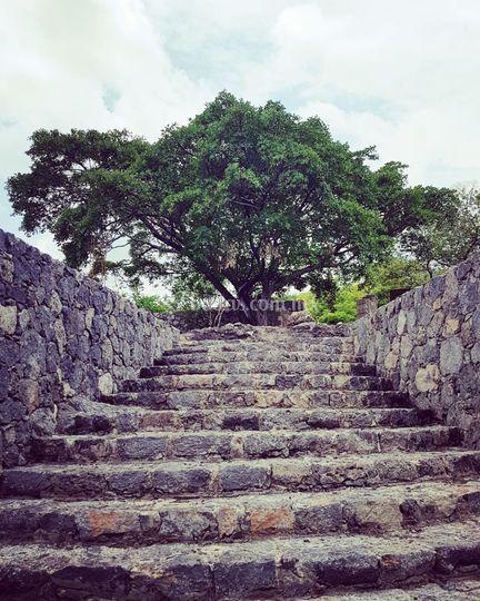 Escaleras piedra alta