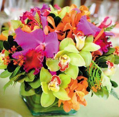 Centro de mesa orquideas