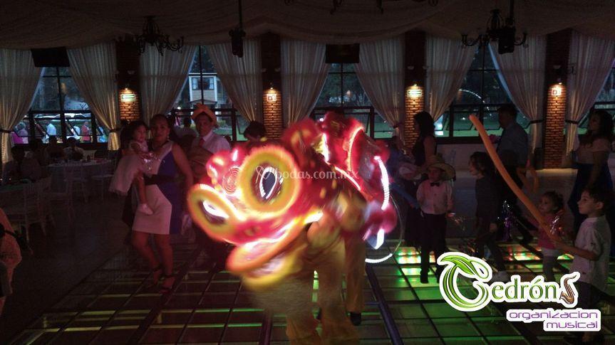 León chino de LEDS