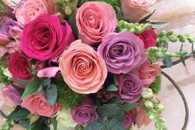 Amore Florería
