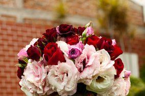 Blanco principal rojo y rosa