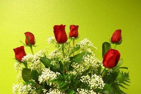 Eduardo´s Flowers