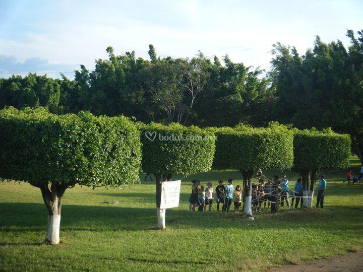 Club para so del sol for Jardin quinta del sol