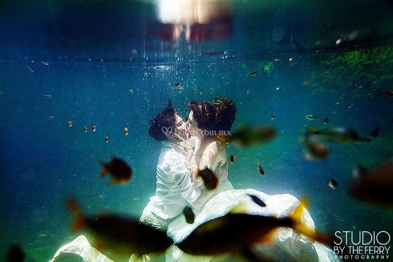 Besos de pez TTD Cenote