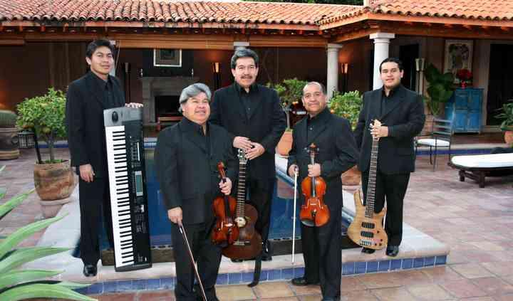 Violines internacionales