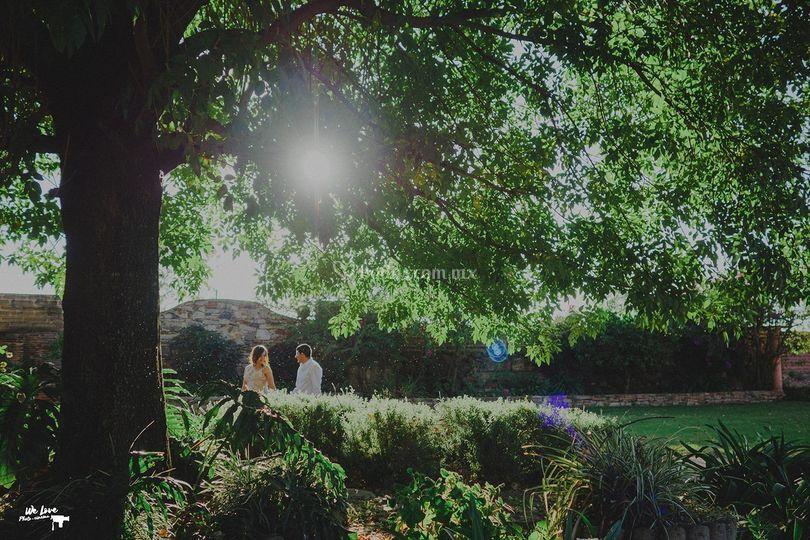 C&M Pre boda