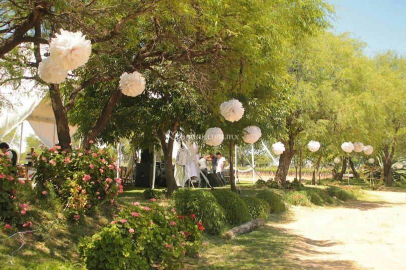 Arreglo jardines de hacienda de letras foto 30 for Arreglos de jardines