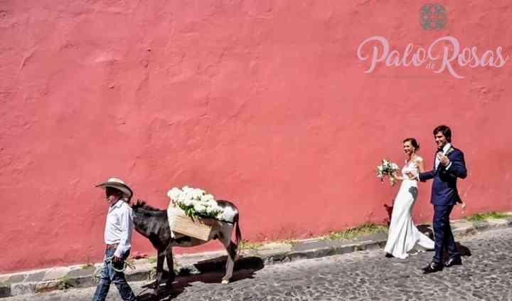 Palo de Rosas