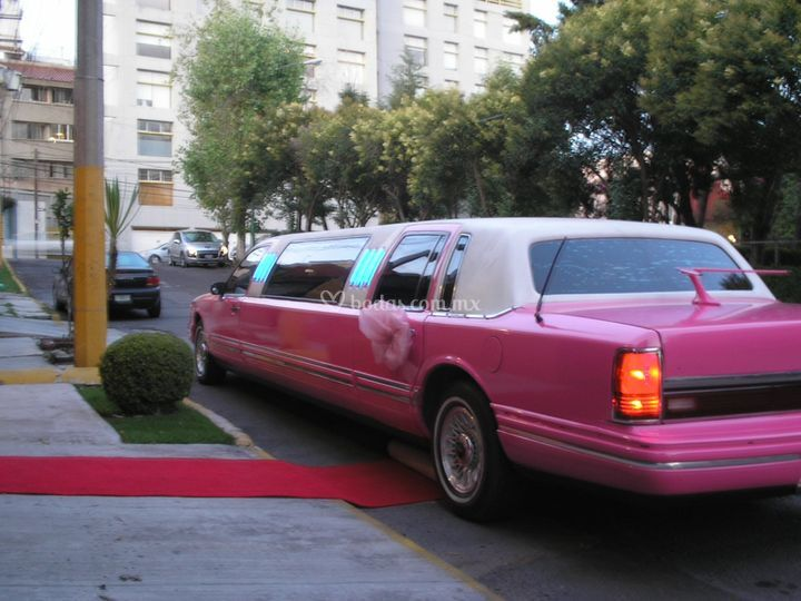 Limusina rosa