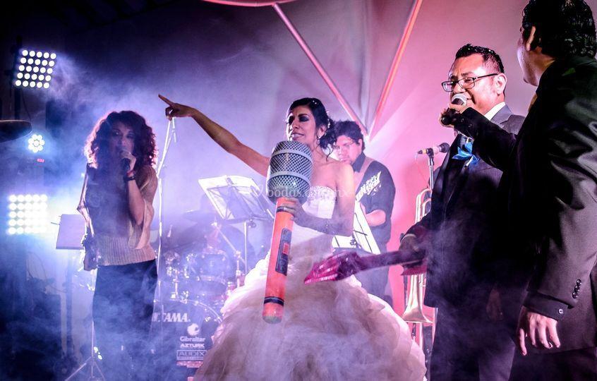 Grupo Alfamusic