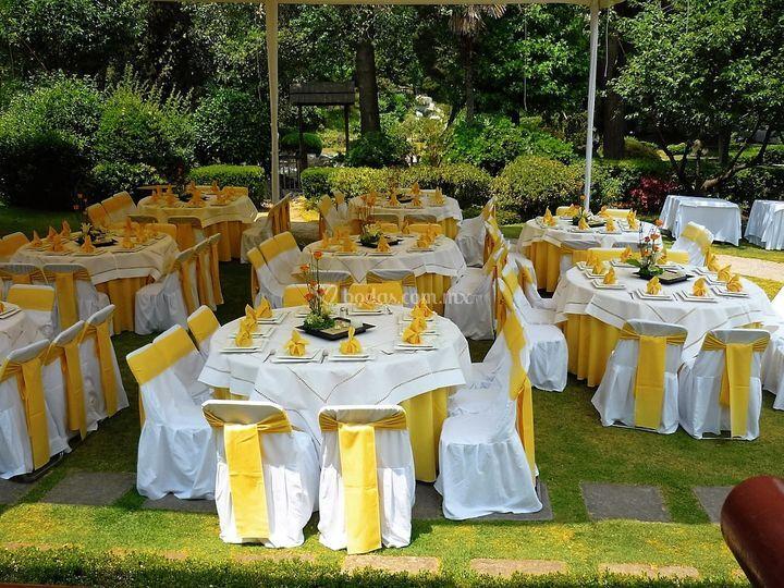 Banquete jardín central