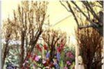 Arreglos florales de Ex Hacienda de Santa M�nica