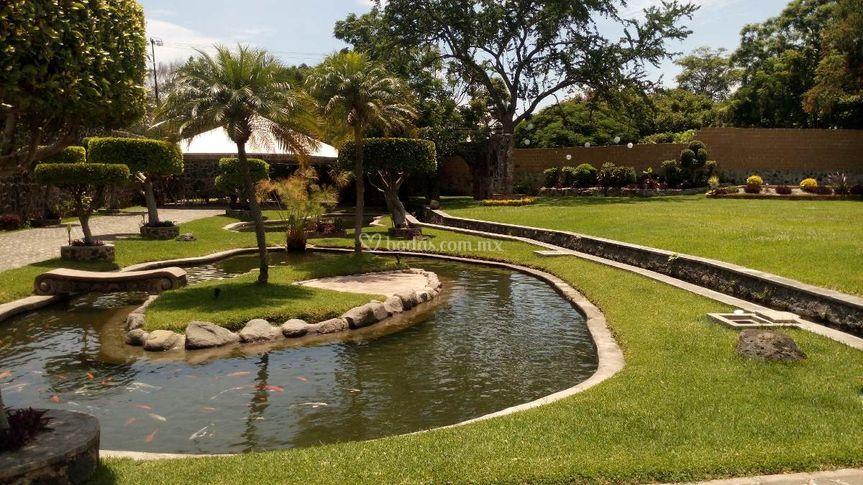 Jardín Lagos 21