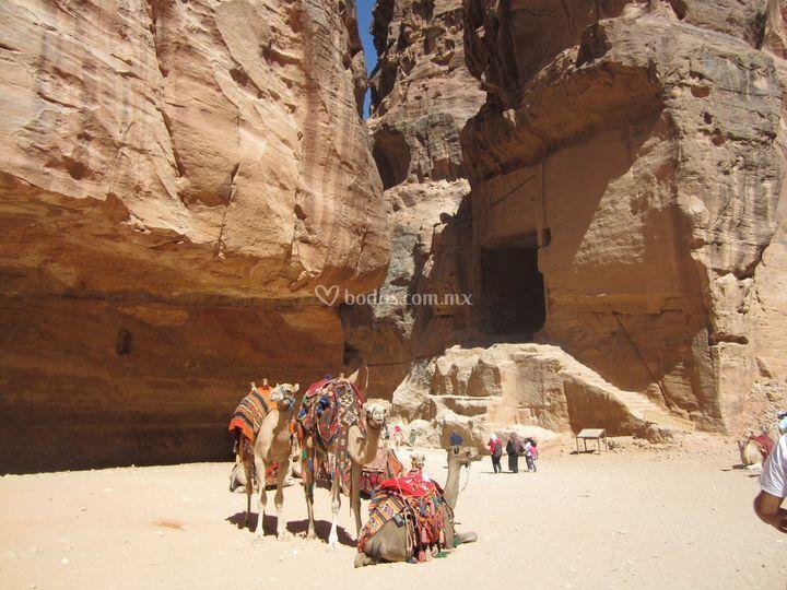Escapada al desierto