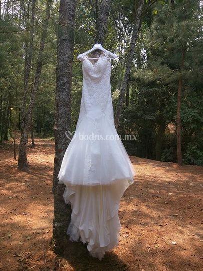 Mi boda en el bosque