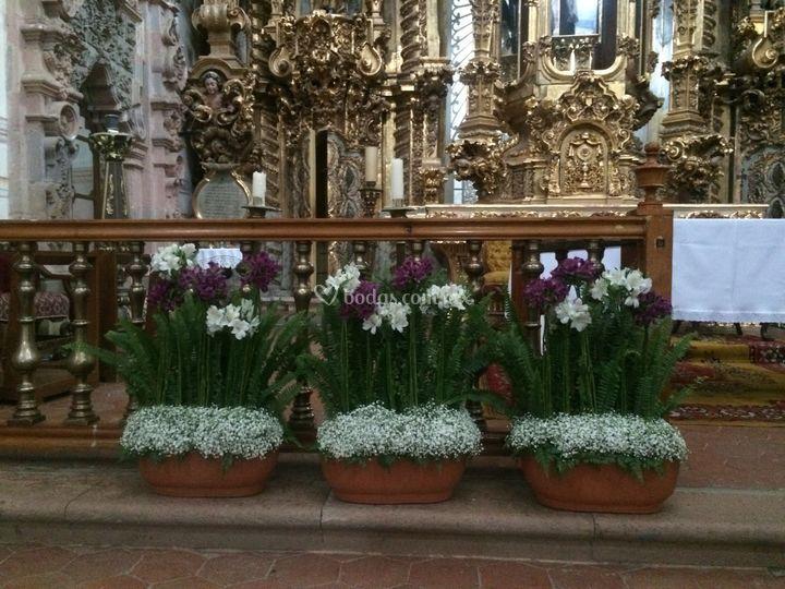 Jardineras altar iglesia