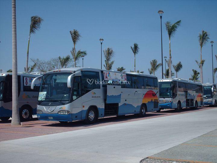 Servicio en autobus