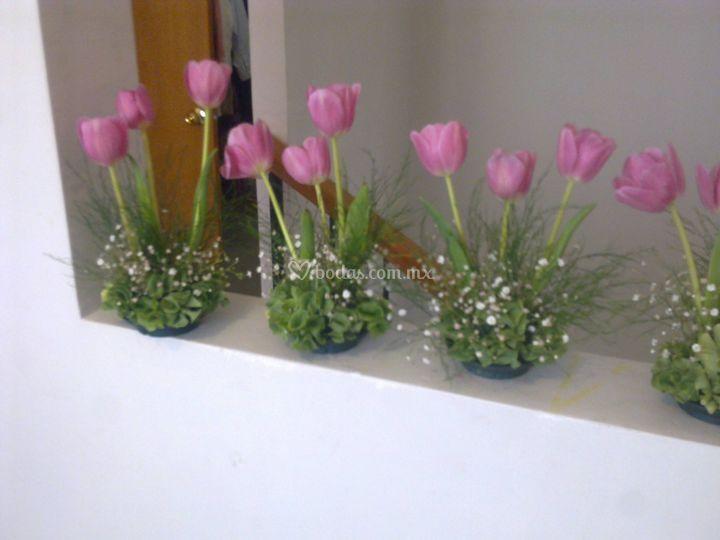 Centros tulipanes sencillos