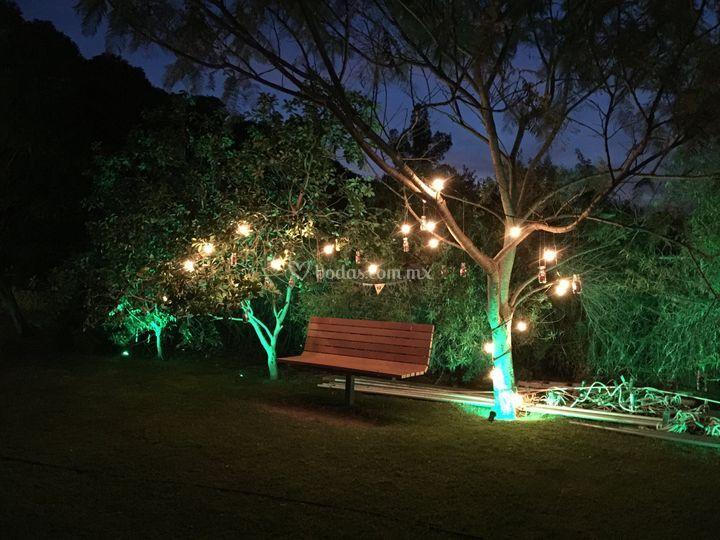 Iluminaci n arquitectonica de la grana terraza jard n foto 9 for Cd market galeria jardin