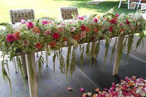 Rosa Mexicano Diseño Floral