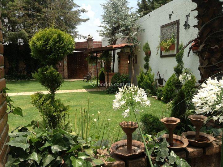 Naturaleza de Hacienda de las Ranas