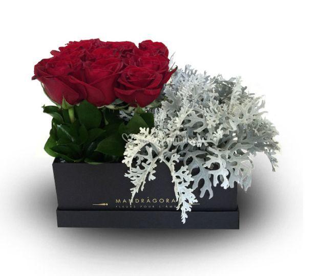 Black box con rosas rojas