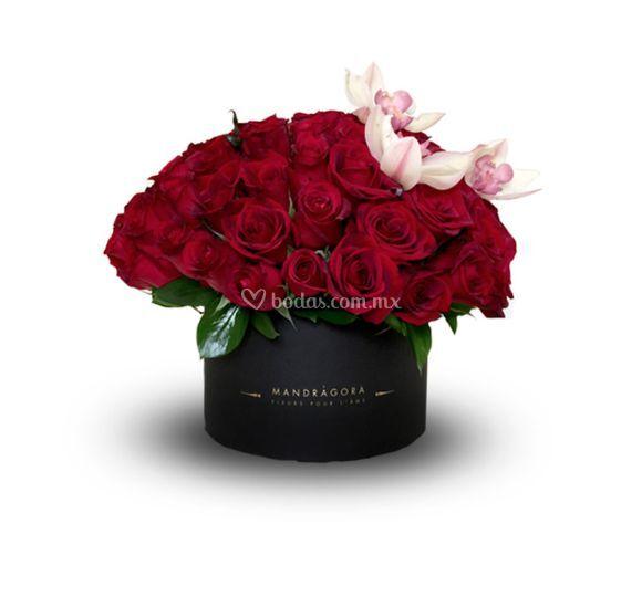 Rosas tradicionales con orquídeas