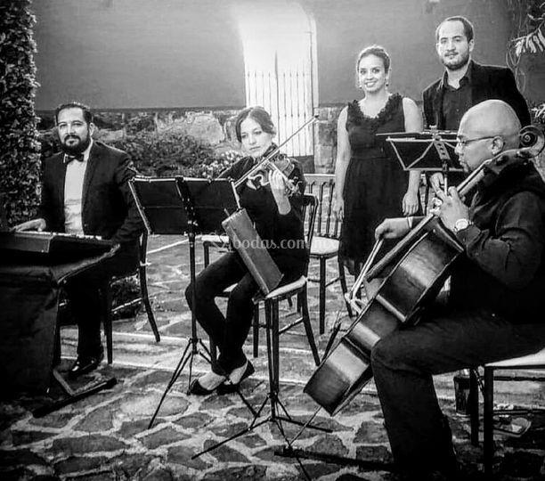 Instrumentos y solistas