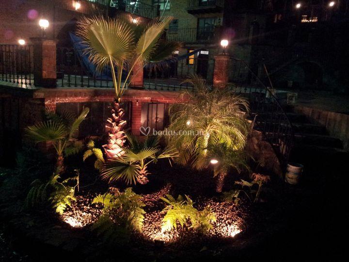 Vistas de jardinería noche